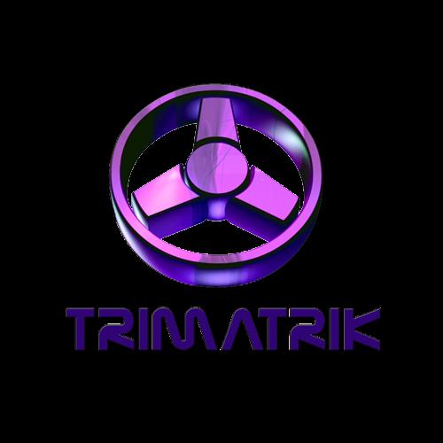 Trimatrik Logo